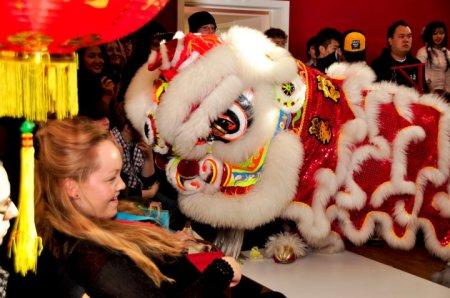 Lion surprises spectator Photo